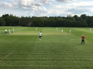 Image of the Old Hallfieldians playing cricket.